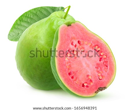 Isolated green guava with pink flesh. One whole fruit and a half isolated on white background with clipping path