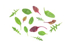 Isolated green laves of spinach, rucola for salad on white background. Healthy food backfround