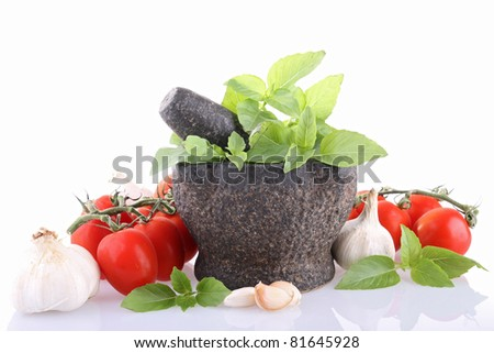 isolated mortar with tomato, garlic and basil on white