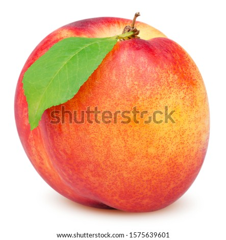 Isolated nectarine. Beautiful nectarine with leaf isolated on white background with clipping path