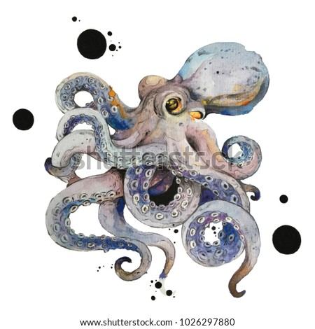 Isolated octopus watercolour painting on white background