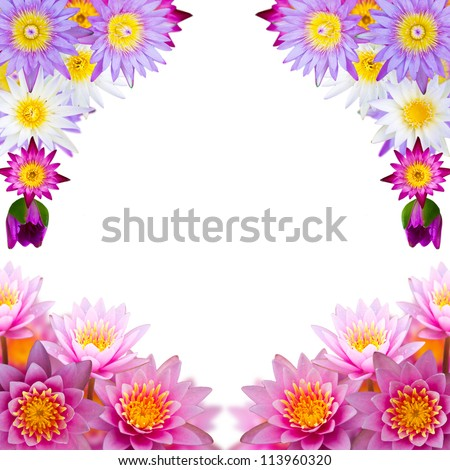 Isolated of lilies bouquet is a beautiful stacked. Many colorful lotus flowers cascading bouquet is beautifully framed.