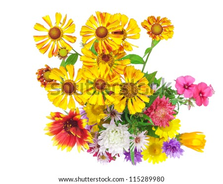Isolated on white bright colorful bouquet of garden and wild natural flowers, selective focus