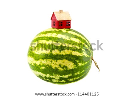 isolated on white watermelon earth with red house symbol