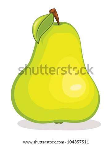 Isolated pear fruit illustration