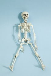Isolated plastic toy skeleton on a vibrant pop blue turquoise background. Minimal color still life photography