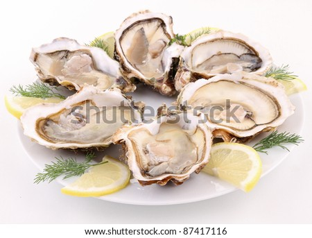 isolated plate of opened oysters on white