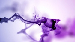 Isolated Purple Violet Ink Cloud floating in clear water. Shot on White Background with selective focus.