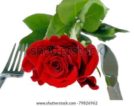 Isolated red rose on the table ready for romantic dinner. - stock photo