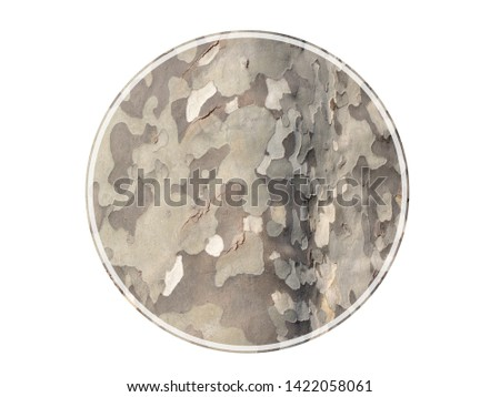 Isolated round picture with frame camouflage