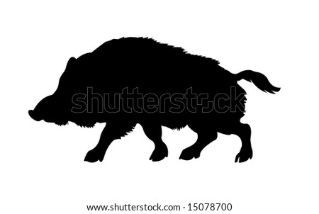 isolated silhouette of the wild boar on white background