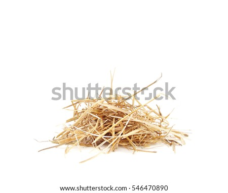 isolated Straw Dry hay #546470890