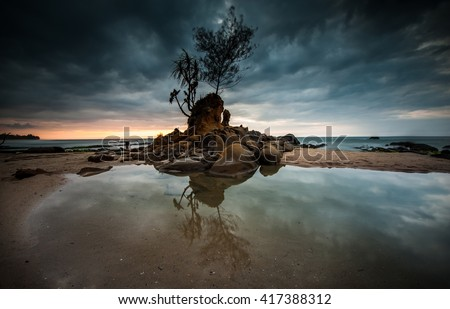 Stock Photo isolated tree with beautiful sunset background. image contain soft focus and blur due to long exposed and cloud movement.