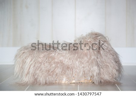 Isolated view of a newborn photography setup, in studio, featuring neutral light boards on the floor and wall. A basket rests in the center, covered with a furry light beige blanket.