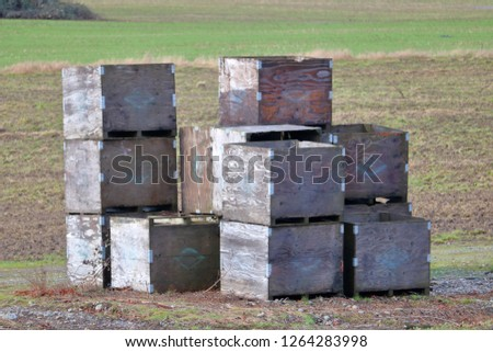 Isolated view of well used crates used for storing and containing freshly picked crops.