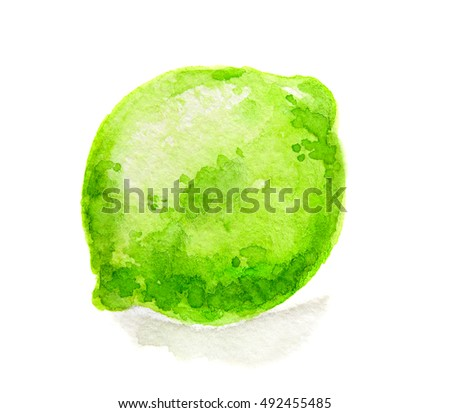 Isolated watercolor lime on white background. Fresh and sour citrus tropical fruit.