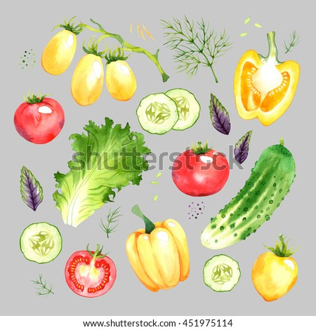 Isolated watercolor vegetables set with tomato, pepper, lettuce, cucumber, basil, dill on grey background