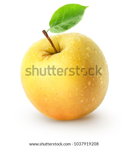 Isolated wet apple. Whole yellow apple fruit with leaf isolated on white background with clipping path