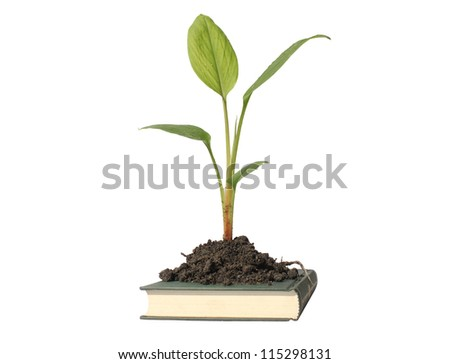 isolated white background. book of nature