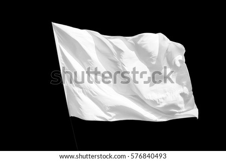 Isolated White flag #576840493