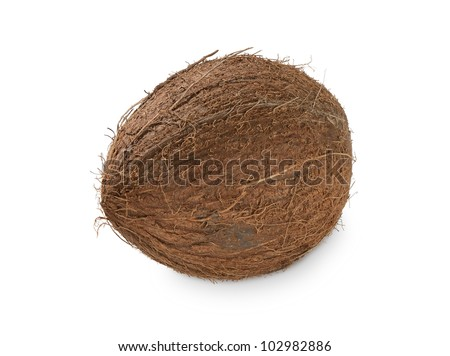 Isolated whole coconut on the white background