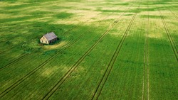 isolation of the house. lonely house in the middle of the field aerial