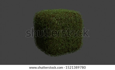 Isometric grass realistic cube realistic cube