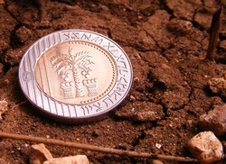 Israeli coin on earth close up.Israeli bimetal coin with a face value of 10 shekels.