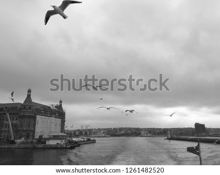 Istanbul Seagulls Sea Top Boats port Haydar pasha Train Station Istanbul Skyline Fantastic Grey Tone Misty Weather Interesting Squares Perspective Angle Photo Purchase.