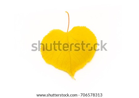 It is Yellow leaf isolated on white. four leaves in the shape of a heart. #706578313