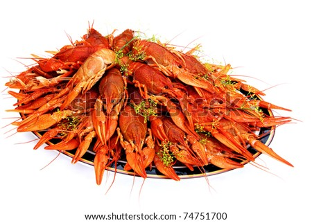 It's a Swedish tradition to eat dill cooked crayfish in August.