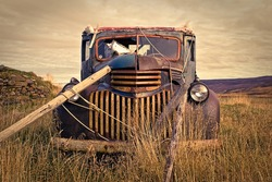 It's pretty common to find some lovely old truck left in the countryside!