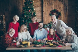 It's x-mas time! Photo of full family gathering sit dinner table multi-generation reunion posing holiday portrait in newyear decorated living room evergreen tree indoors
