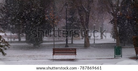 It snows in forest, lonely bench in the foreground, light poles and trees in the background. Panoramic