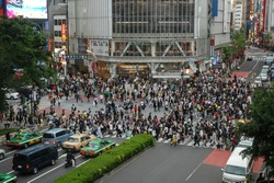 It would be a shame to come to Tokyo and not take a walk across the famous intersection outside Shibuya Station.