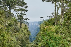Itaimbezinho canyon at the Aparados da Serra National Park, located in the Serra Geral range of Rio Grande do Sul and Santa Catarina between coastal forests, grasslands and Araucaria moist forests