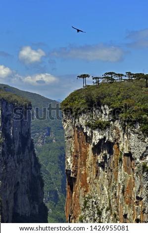 Itaimbezinho Canyon in Aparados da Serra Park, Cambara do Sul, Rio Grande do Sul, Brazil