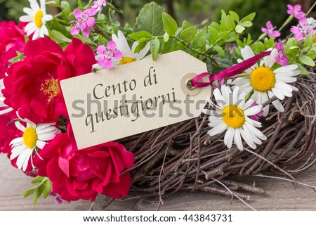 Free italian birthday card with summer flowers and the text italian birthday card with summer flowers and the text congratulations on your birthday congratulations on bookmarktalkfo Gallery