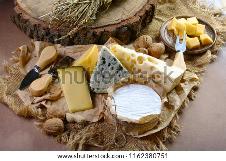 Italian cheese assorted, cheese with blue mildew, Camembert or brie cheese circle, Cheese Serving Knife. top view image with copy space, set.