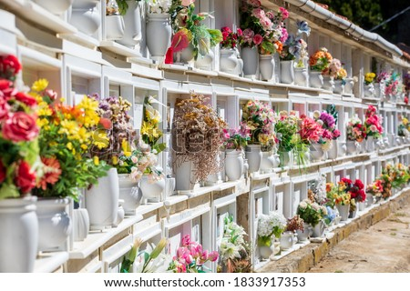 Italian Christian cemetery grave and floral tributes. Tombs burial mounds in Riomaggiore in Italy. Memorial gravestone.