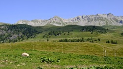 Italian Dolomites landscapes and animals
