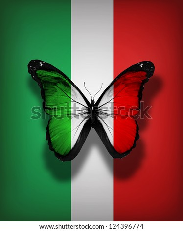 Italian flag butterfly, isolated on flag background