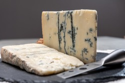 Italian food, buttery or firm blue cheese made from cow milk in Gorgonzola, Milan, Italy close up