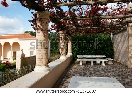 Italian home and landscaping, portico with grape vine draped over.