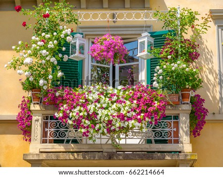 Italian house windows and balcony decorated with a mix of many plants and flowers in colored pots
