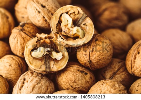 Italian nuts. Wooden nutcracker. Scattered nuts on a table with shallow depth of depth and depth. #1405808213
