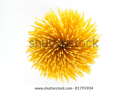 Italian Pasta with  white background