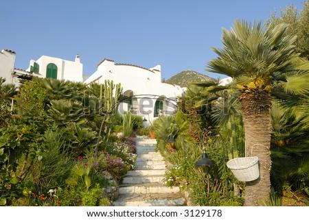 Italian seaside house immersed in typical mediterranean garden