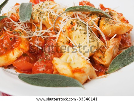 Italian tortellini pasta with herbs and tomato sauce