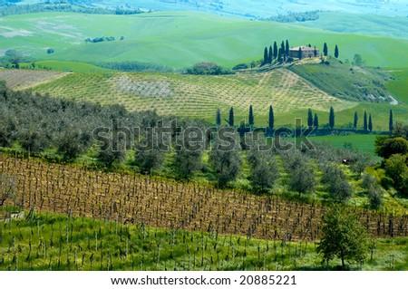 Italian villa near Pienza, in the Tuscany region of Italy.